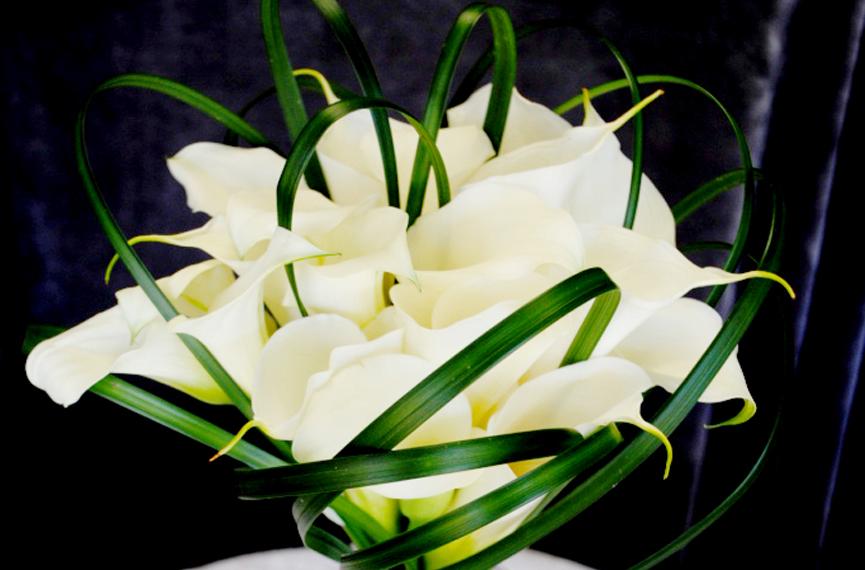603 - Atlantic City Flower Shop
